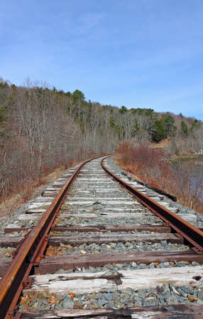 forest railroad: Rural railroad tracks leading into forest with blue sky.