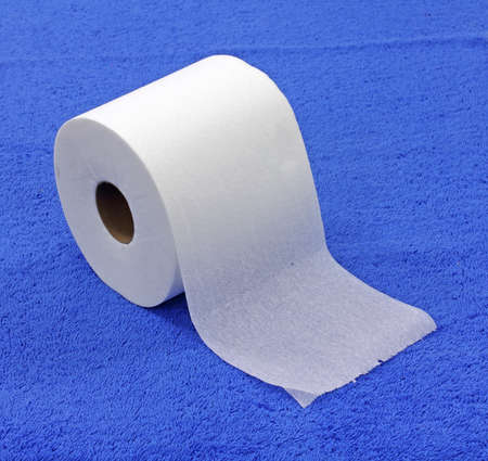 ply: A roll of single ply toilet tissue on a blue cloth background.