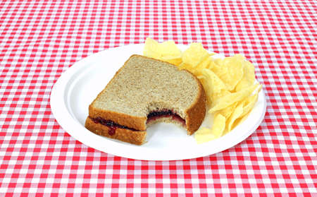 concord grape: A bitten grape jelly sandwich on wheat bread with chips on a red and white picnic table tablecloth.