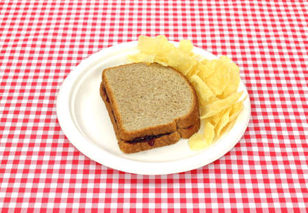 A wheat bread and grape jelly sandwich with chips on a picnic plate. photo
