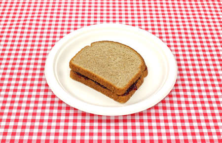 concord grape: A whole wheat bread grape jelly sandwich on a recycled picnic plate.