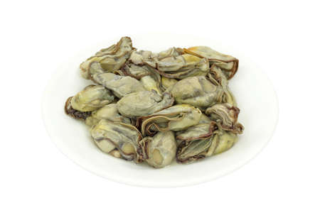 shucked: Several oysters on a white plate for stew. Stock Photo