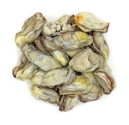 shucked: A group of oysters for stew on a white background. Stock Photo