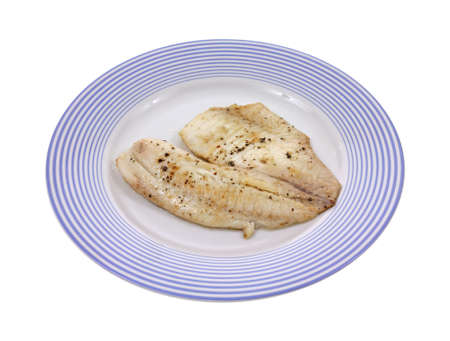 A fillet of tilapia on a blue striped plate.  photo