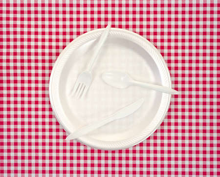 throwaway: A fork knife and spoon on a throwaway picnic plate atop a red and white checkerboard cloth