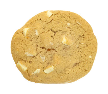 A single white chocolate and macadamia nut cookie  Stock Photo - 12710681