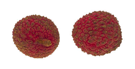 Two lychee nuts isolated on a white background