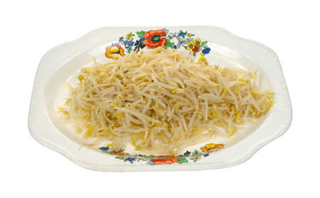 An old tray with floral print with fresh bean sprouts on a white background Stock Photo - 13926818