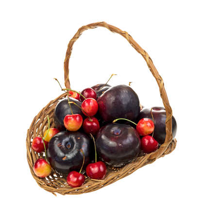 An old wicker basket filled with ripe red cherries and plums on a white background  Stock Photo - 14703047