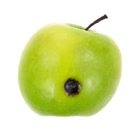 A fresh green apple with a single bad spot on a white background