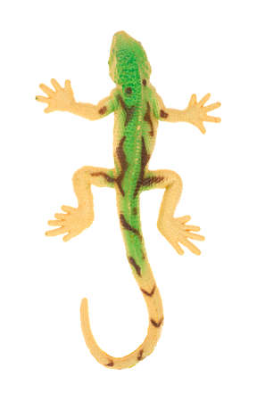 Top view of a toy gecko on a white background  photo
