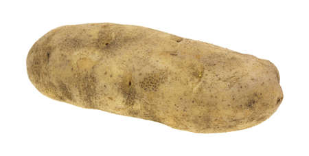 russet potato: A large russet potato on a white background