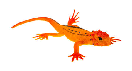 molded: A small toy lizard molded in orange with black stripes on a white background  Stock Photo