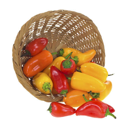 A wicker basket on it's side spilling several small sweet peppers onto a white background. Stock Photo - 19337693
