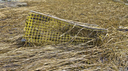 A lobster trap that has been discarded on shore with the mesh bent and damaged.