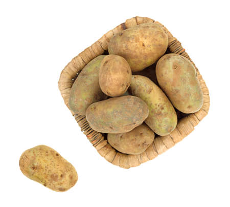 russet potato: Top view of a basket of russet potatoes with one to the side on a white background  Stock Photo