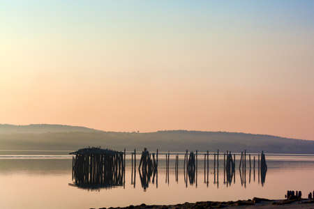 seabirds: A group of derelict pilings with seabirds nesting off Sandy Beach in Stockton Springs, Maine in the early morning light