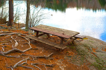 A wood picnic table on a rock ledge next to a small pond with exposed roots and pine needles