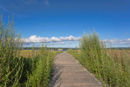 An old wood walkway with weeds on either siding leading toward the Penobscot River at Sandy Point Beach in Stockton Springs, Maine