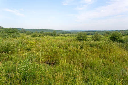vacant land: A large area of vacant land in rural New England.
