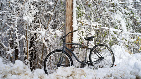 telephone pole: An old bicycle propped up against a telephone pole after a winter snowstorm.