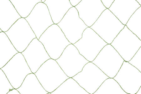 fishnet: A large opening green fishnet on a white background.