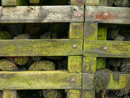 retaining: View of a post and beam rock filled retaining wall for a pier at low tide.