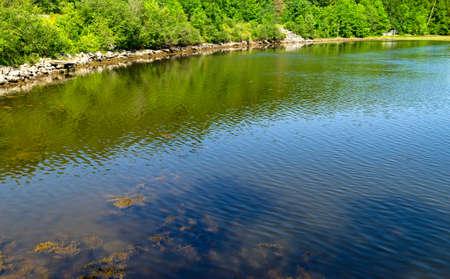 estuary: A portion of the Passagassawakeag River estuary in Belfast, Maine.
