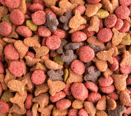 cat food: A very close view of generic dry cat food.