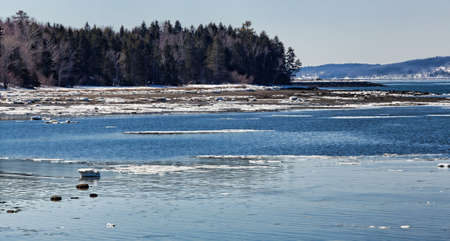 sears: Part of Sears Island in Searsport Maine in early spring with ice.