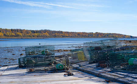 A group of lobster traps pulled for the season atop a floating tilting dock with mud flats, bay and autumn trees in the distance on the coast of Maine.
