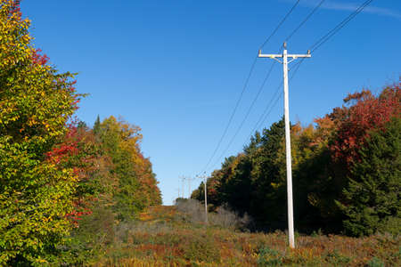 cut through: Rural power lines cut through a forest with fall leaves turning on either side in New England.