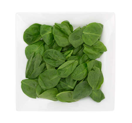 'baby spinach': Top view of a serving of baby spinach on a square plate isolated on a white background. Stock Photo