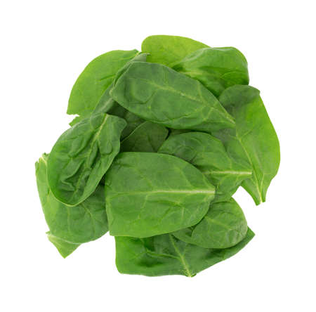 baby spinach: Top view of a serving of baby spinach isolated on a white background.