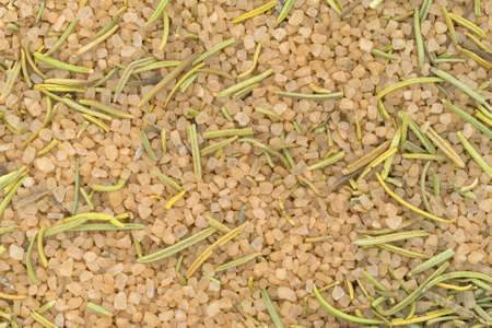 flavorings: A very close view of a simple blend of Tuscan seasoning.