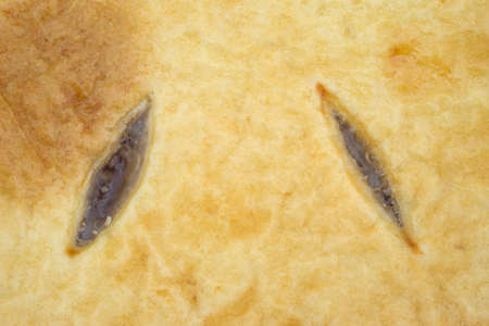 vents: Close view of the cut vents in the pastry crust of a sugar free apple pie.