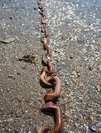 mooring: A large mooring chain leading into the distance at low tide. Stock Photo