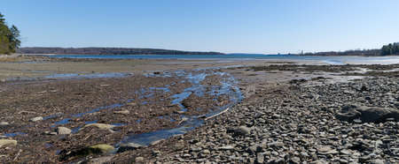 sears: Panoramic view of fresh water runoff into Long Cove at Searsport Maine with a working pier in the distance. Stock Photo