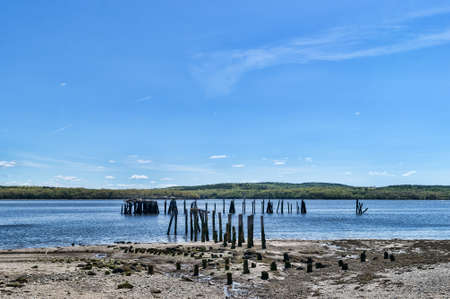 pilings: View of the old pilings that birds use on a clear spring day at Stockton Springs, Maine. Stock Photo
