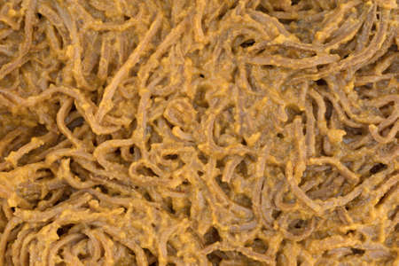 A very close view of soybean spaghetti in a tomato sauce.