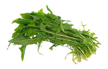 Hoogste mening van verscheidene bladeren van organische paardebloemgreens die op een witte achtergrond wordt geïsoleerd.