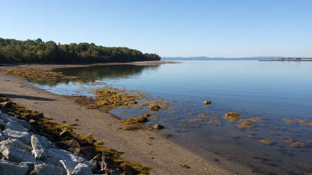 sears: Wide view of the tip of Sears Island in Searsport, Maine with granite blocks, gravel beach and seaweed.
