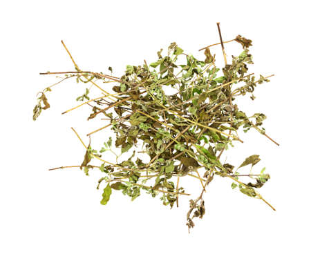 Several branches of dried organic marjoram isolated on a white background. Zdjęcie Seryjne