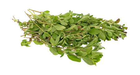 A bunch of organic marjoram isolated on a white background.