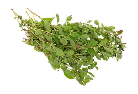 Top view of a bunch of organic marjoram isolated on a white background. Archivio Fotografico