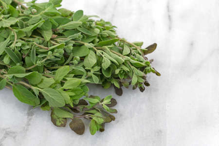 Close view of several branches of organic marjoram on a gray marble cutting board.