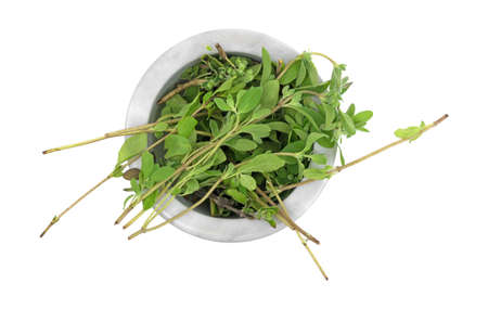 Top view of a portion of organic marjoram to be crushed in a mortar isolated on a white background. Zdjęcie Seryjne