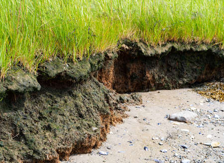 Close view of the erosion of a beach and coastline with brown topsoil and dirt and green grass above. Archivio Fotografico - 107978386