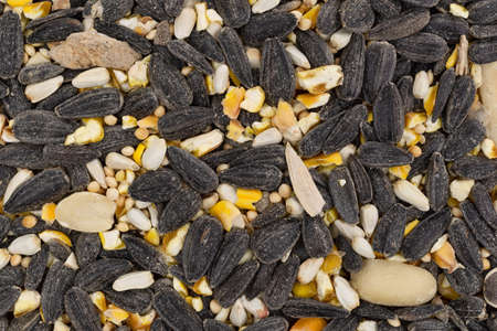 Close view of bulk wild bird food with assorted seeds and peanuts.