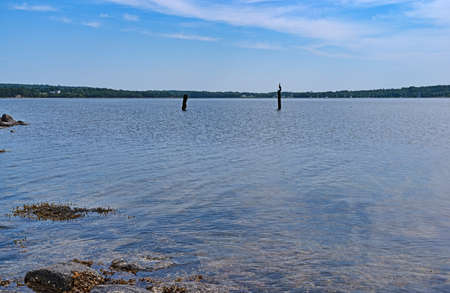 Distant view of a cormorant sitting on a wood post at Stockton Springs Harbor in Maine. Stock Photo